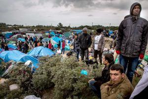 Бельгия вводит пограничный контроль на границе с Францией