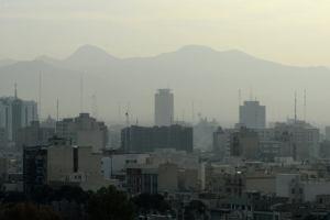Иран: Офис Visit Russia открылся в Тегеране