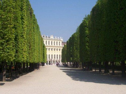 Барокко-аллеи дворца Шенбрунн