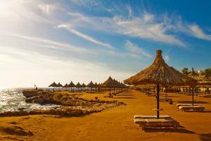 Великобритания: Thomas Cook отказался от летних туров в Египет